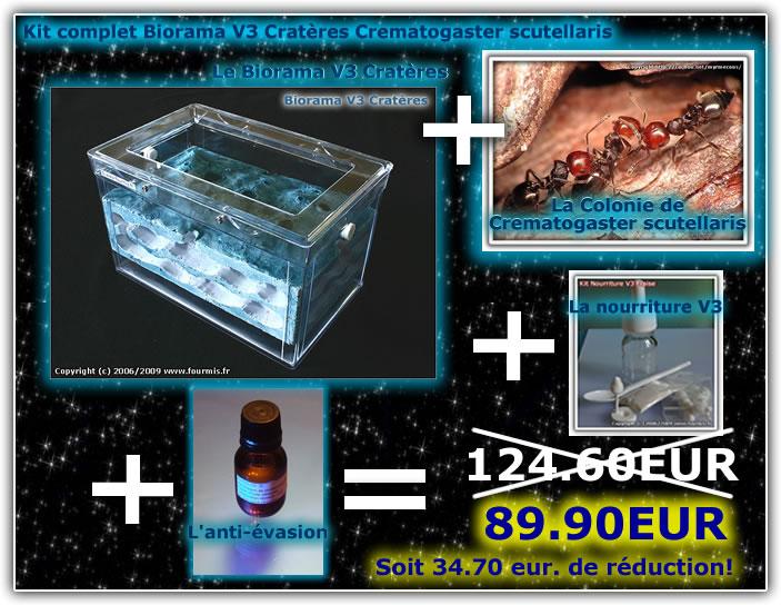 des fourmis en vivarium !!!!!! Kit-cr10