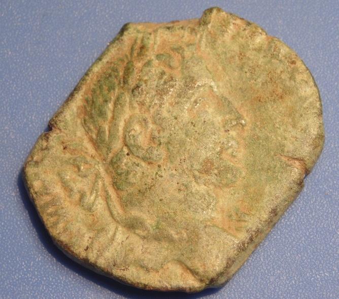 romaine forme bizarre! Avers110
