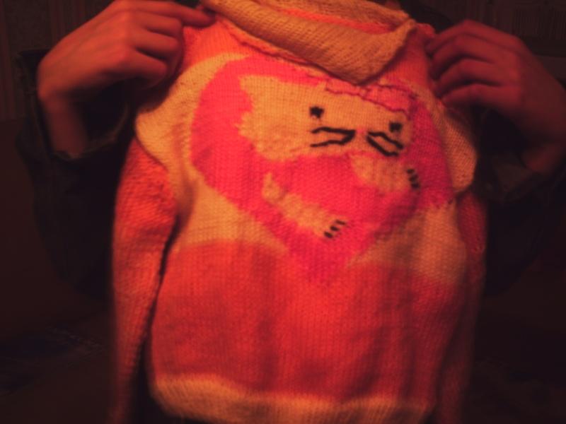 mon dernier tricot Tricot11