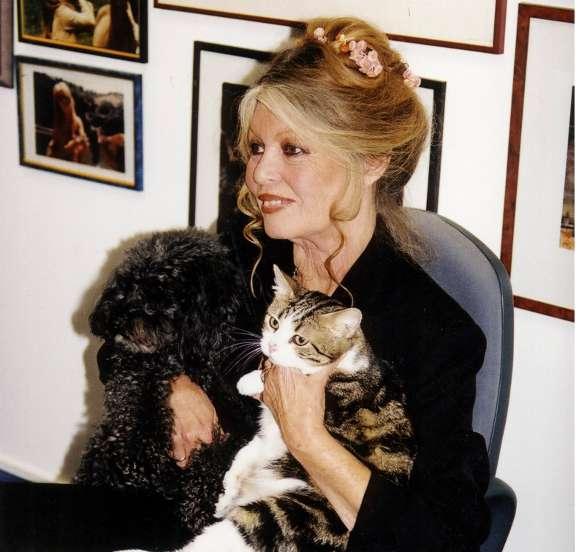 Brigitte Bardot : interview exclusive pour www.actuanimaux.com Barot10