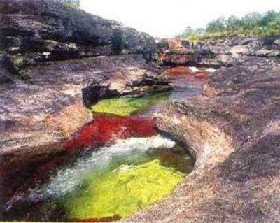 Amérique du Sud. Le fleuve, mondialement célèbre pour son affichage en couleurs Rivier10