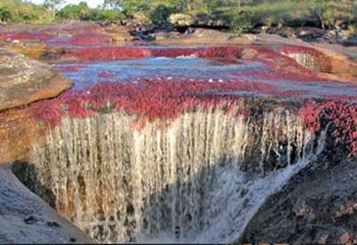 Amérique du Sud. Le fleuve, mondialement célèbre pour son affichage en couleurs Rivier12