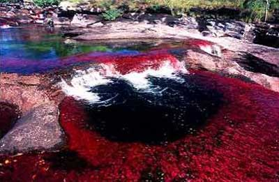 Amérique du Sud. Le fleuve, mondialement célèbre pour son affichage en couleurs Rivier16