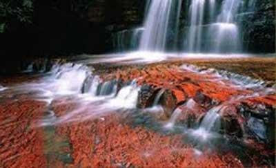 Amérique du Sud. Le fleuve, mondialement célèbre pour son affichage en couleurs Rivier18