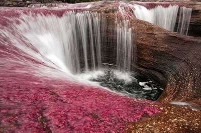 Amérique du Sud. Le fleuve, mondialement célèbre pour son affichage en couleurs Rivier19