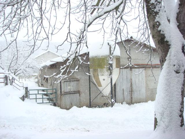 neige - Page 6 Dsc01012