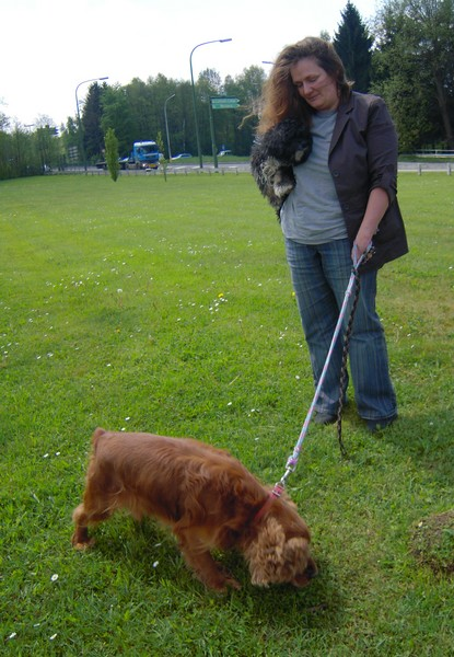 Covoiturage de 6 chiens (15 mai 2010) Annett10