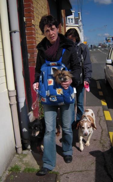 Promenade (1er avril 2010) Fanett10