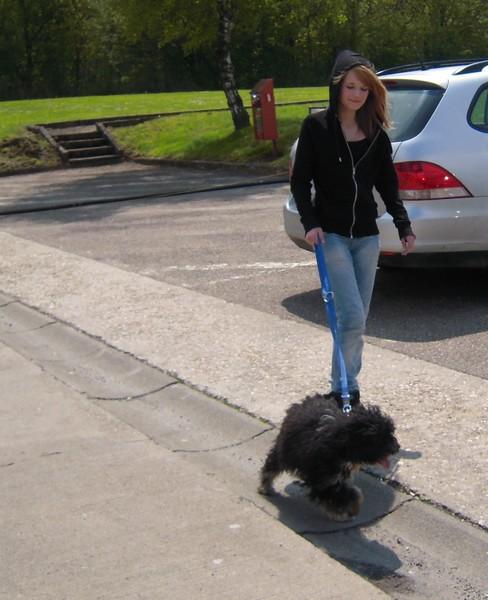 Covoiturage de 6 chiens (15 mai 2010) Fiona-12