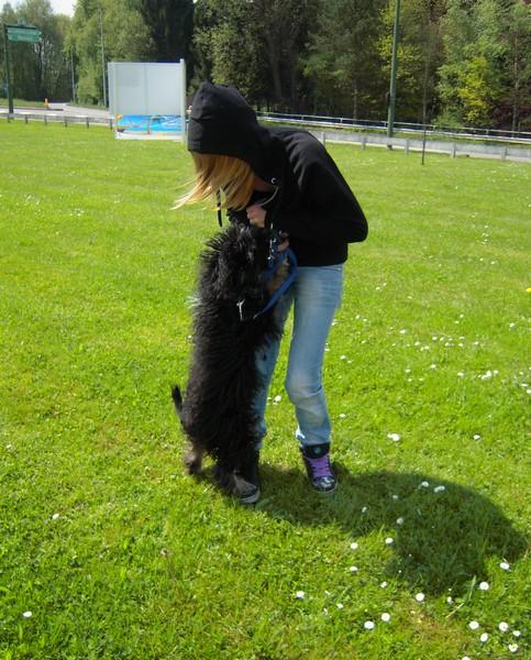 Covoiturage de 6 chiens (15 mai 2010) Fiona-13