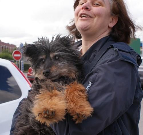 Adoption de FOXY (19 juin 2010) Foxy-a12