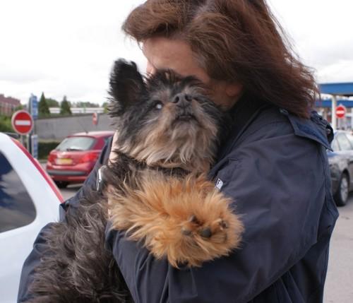 Adoption de FOXY (19 juin 2010) Foxy-a14