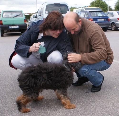 Adoption de FOXY (19 juin 2010) Foxy-d10