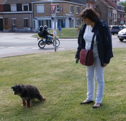 Adoption de FOXY (19 juin 2010) Foxy-p10