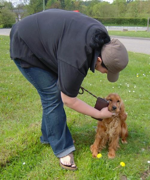 Covoiturage de 6 chiens (15 mai 2010) Nina-c10