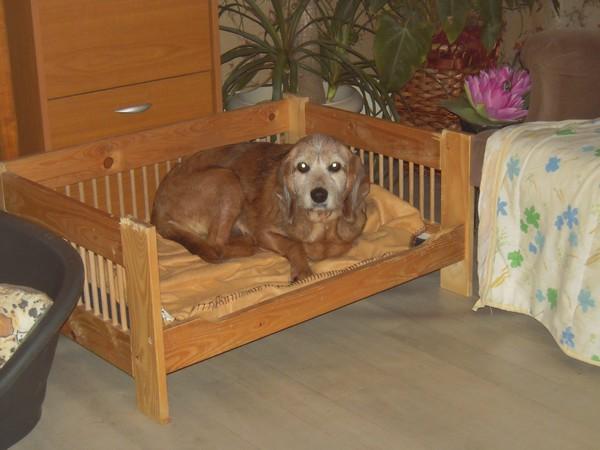 TOBBY et le confort (19 avril 2010) Tobby-15