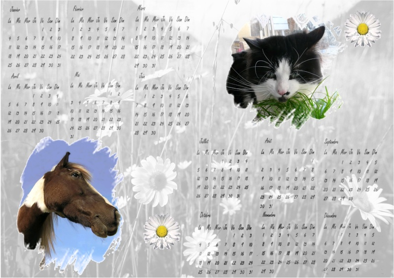 Calendrier - Page 2 Calend10