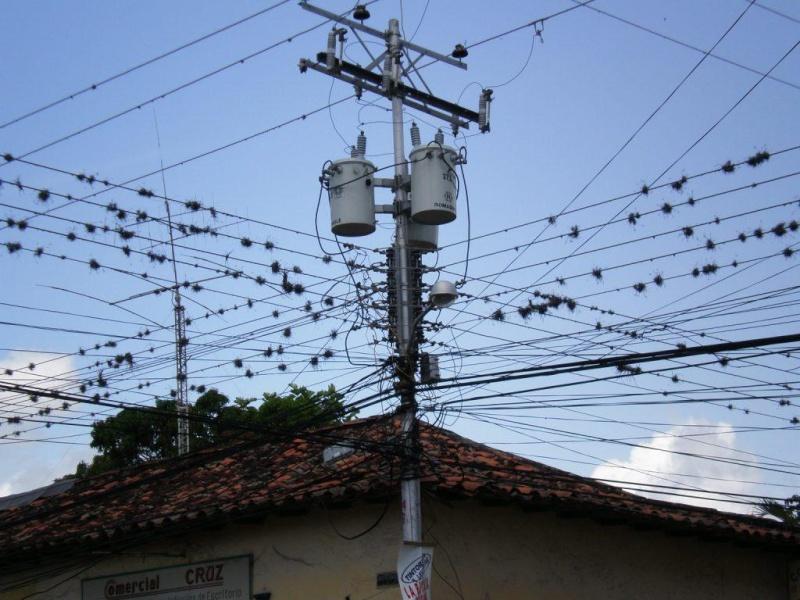 Bizarre ? vous avez dit bizarre...vu à Caracas et environs F10