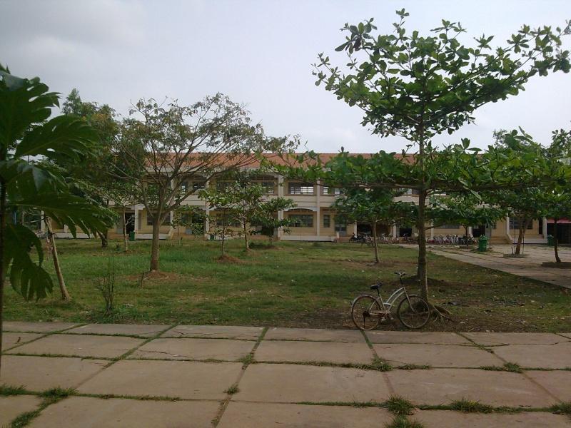 Hình ảnh trường Long Cang Hanh_a11