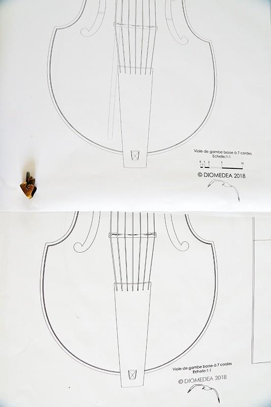 [Lutherie] Viole de gambe à 7 cordes. - Page 4 30_jui11