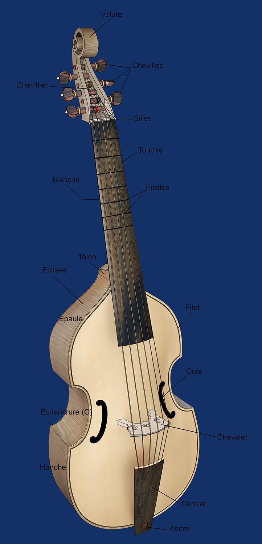 [Lutherie] Viole de gambe à 7 cordes. - Page 14 Sans_135