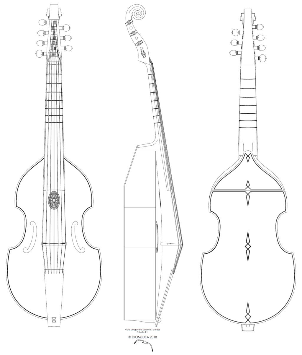 [Lutherie] Viole de gambe à 7 cordes. Sans_t13