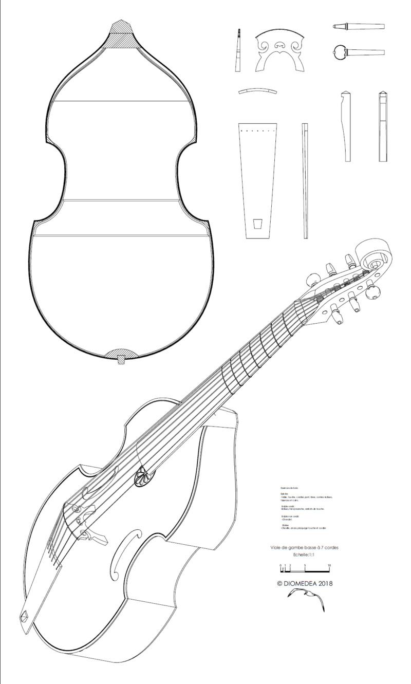 [Lutherie] Viole de gambe à 7 cordes. - Page 3 Sans_t20