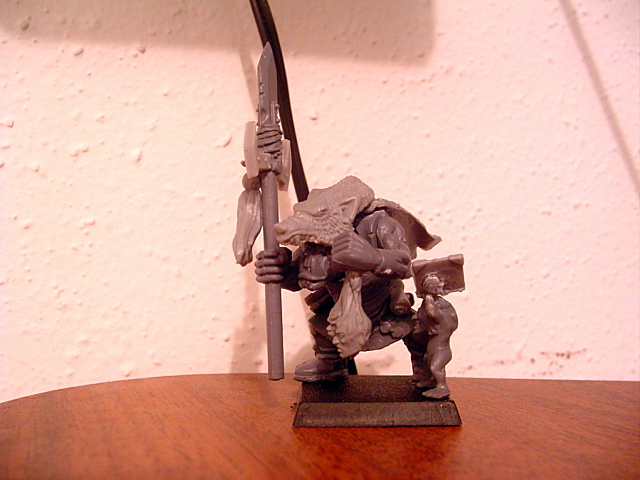 Orc Shaman - Need Help with WIP Dsc00828