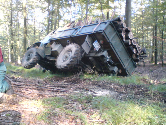 unimog mb-trac wf-trac pour utilisation forestière dans le monde - Page 5 33695310