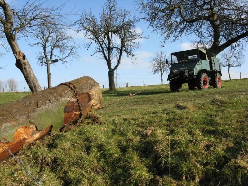 unimog mb-trac wf-trac pour utilisation forestière dans le monde - Page 2 41111210