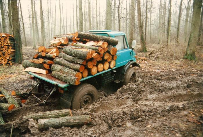 unimog mb-trac wf-trac pour utilisation forestière dans le monde - Page 5 41456010