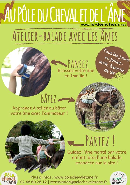 JUILLET-AÔUT 2020 - LIGNIERES - Atelier - Balade avec les ânes  0011683