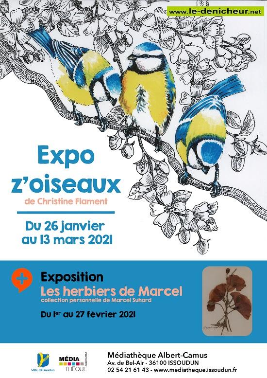 o13 - Jusqu'au 13 mars - ISSOUDUN - Expo Z'Oiseaux */ 0012641