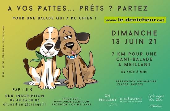 r13 - DIM 13 juin - MEILLANT - Cani-Balade _* 0012685