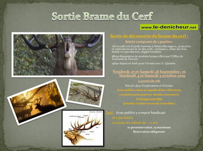 v04 - VEN 04 octobre - VIERZON - Sortie Brame du Cerf .*/ 001937