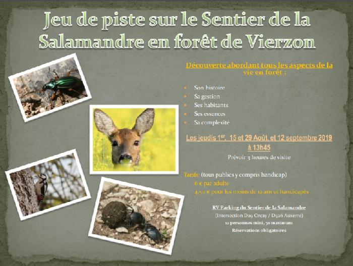 u12 - JEU 12 septembre - VIERZON - Jeu de piste en forêt .*/ 002116