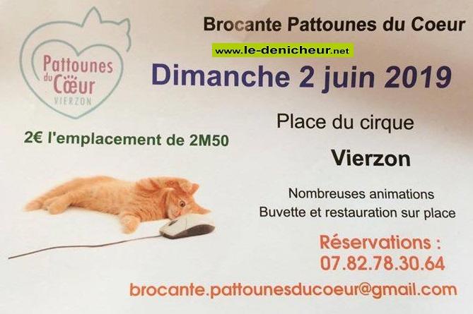 r02 - DIM 02 juin - VIERZON - Brocante des Pattounes du Coeur * 06-02_10