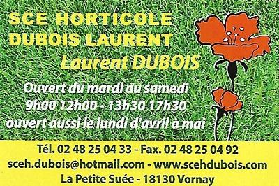 ze13. VORNAY - SCE HORTICOLE - Laurent DUBOIS - Horticulteur. Maraîcher Vornay12