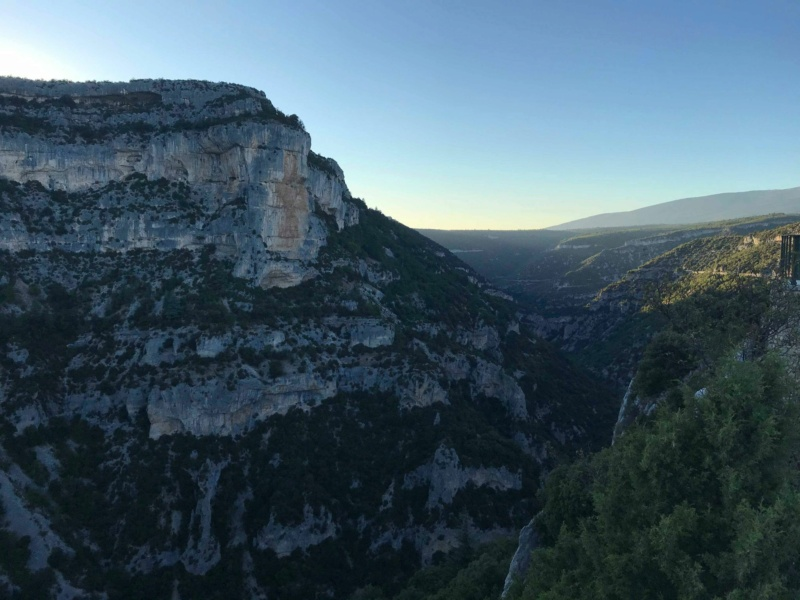 Les gorges de La Nesque en duo. 11857210