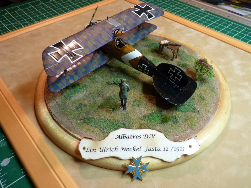 "GB "" Avions de la Grande Guerre"" P1000529"