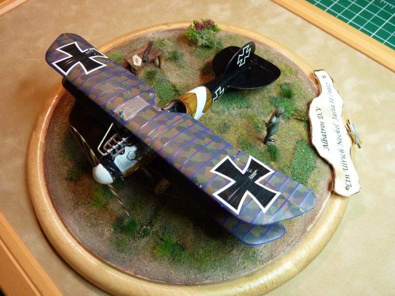 "GB "" Avions de la Grande Guerre"" P1000530"