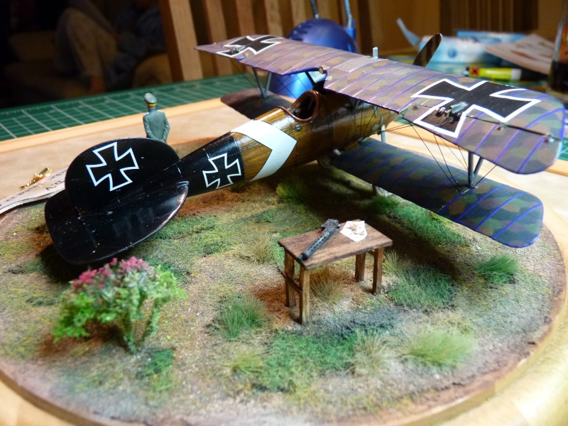 "GB "" Avions de la Grande Guerre"" P1000532"