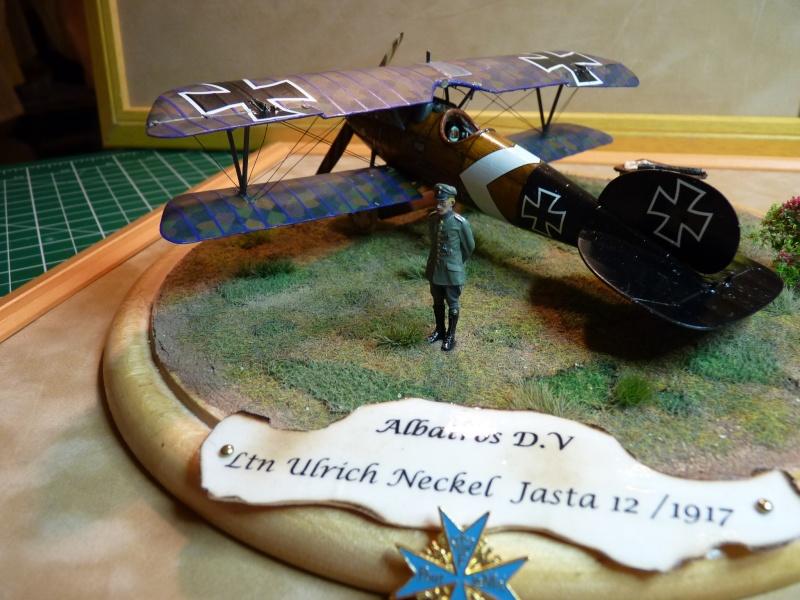 "GB "" Avions de la Grande Guerre"" P1000533"