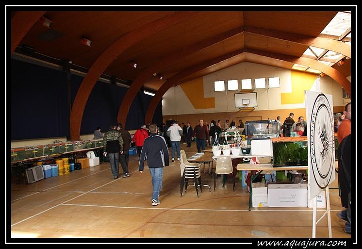 Photo de la bourse de l'Association Comtoise d'Aquariophilie du 07/03/10 Img_8410