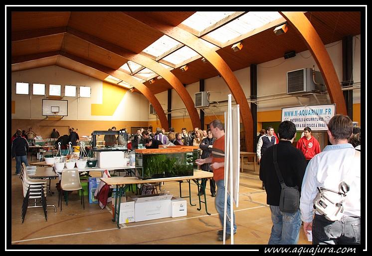 Photo de la bourse de l'Association Comtoise d'Aquariophilie du 07/03/10 Img_8411