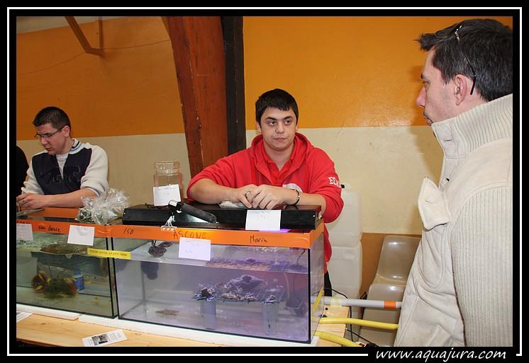 Photo de la bourse de l'Association Comtoise d'Aquariophilie du 07/03/10 Img_8423