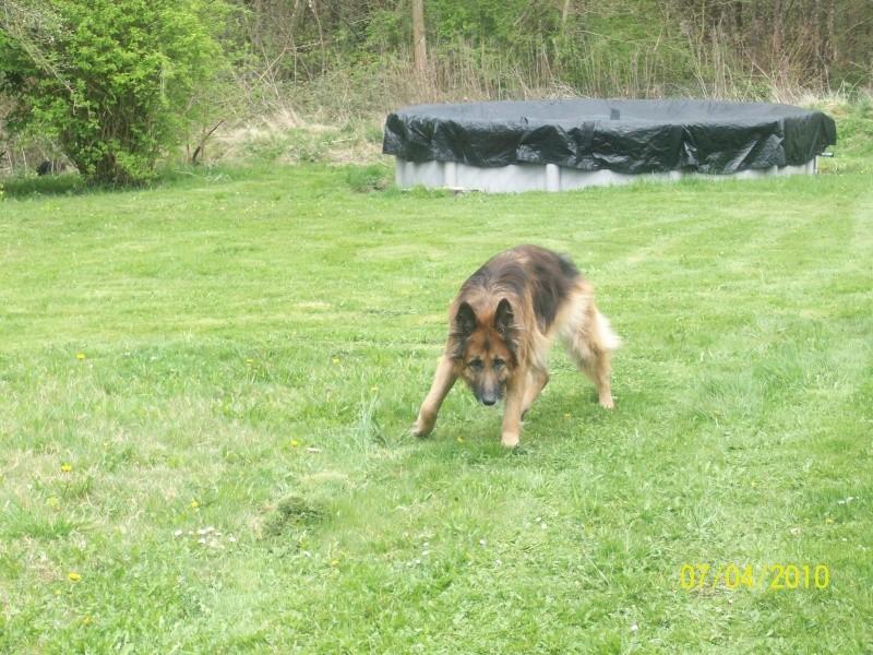vip dans son jardin Sdf_0015