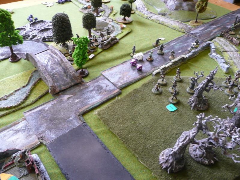 campagne RoE : bataille de Montélimar, 23-29 août 1944 P1020939