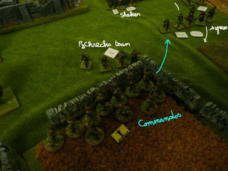 compte rendu des combats RoE du week end des 4 & 5 décembre 2008 à Montgeron P1040186