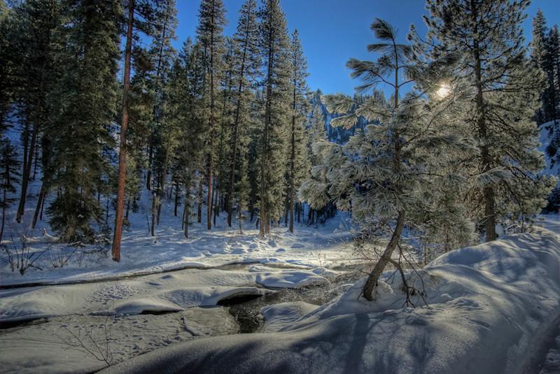 Snowy Riverbank Snowy_10